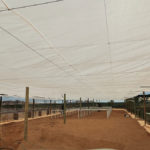 Nursery Upgrades & Civil Works for Vedanta BMM | Silo n Sons General Services (PTY) Ltd